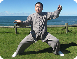 Find Out More About Master Yingjun Seminars